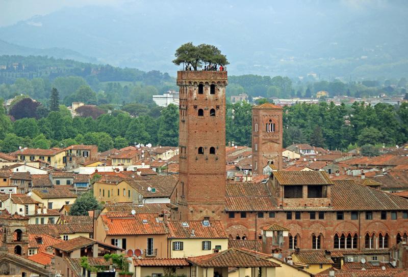 Torre Guinigi de Lucca.